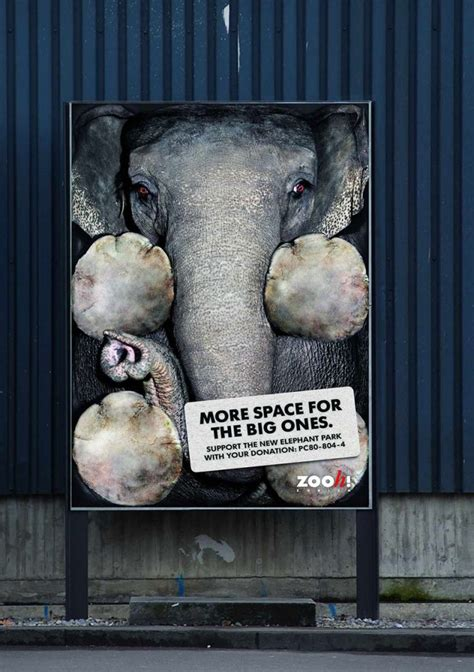 Heartbreaking Public Ads on Animal Cruelty - Earthly Mission