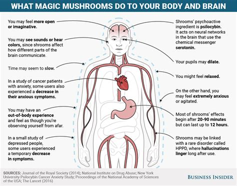 Mental and physical effects of magic mushrooms - Business
